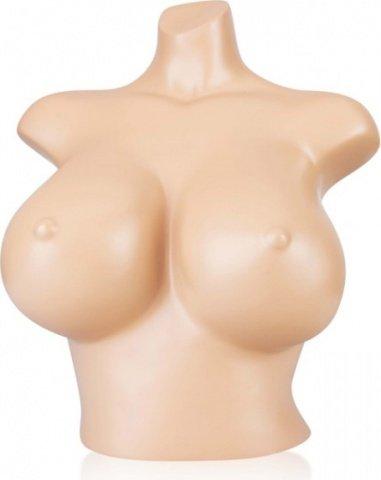 Манекен девушка, бьюст, размер груди D, фото 2