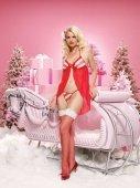 Праздничный комплект | Комплекты эротичного белья | Секс-шоп Мир Оргазма