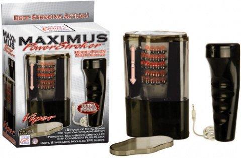 ��������������� maximus ������