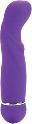 Вибратор posh 10 function petite teaser purple 0725-20bxse 12 см, фото 3