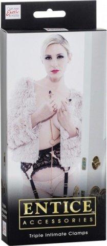 Зажимы для сосков и половых губ с цепью Entice Triple Intimate Clamps золотистые, фото 2