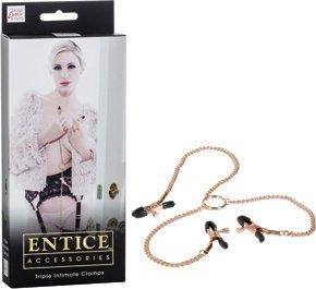Зажимы для сосков и половых губ с цепью Entice Triple Intimate Clamps золотистые, фото 4