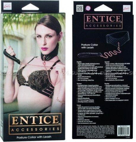 Ошейник с поводком съемный игровой Entice Posture Collar with Leash черный из пвх, фото 2