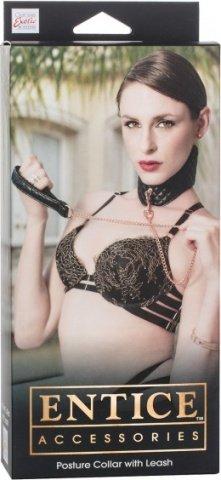 Ошейник с поводком съемный игровой Entice Posture Collar with Leash черный из пвх, фото 4