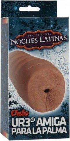 Смуглая попка noches latinas, фото 2