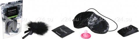 Набор для эротических игр Instruments of Pleasure, фото 2
