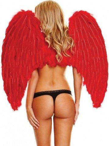 Большие красные крылья из натуральных перьев red love, фото 2