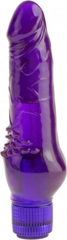 Juicy jewels orchid ecstasy purple
