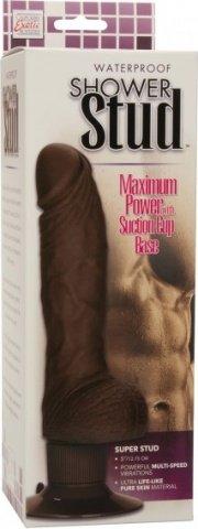 Shower stud super stud brown, ���� 2