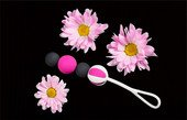 Магнитные вагинальные шарики разного веса Geisha Balls Magnetic (4 шарика), диаметр серого шарика 1,8см, диаметр шарика 2см., диаметр серого шарика 1,8см, диаметр шарика 2см. - Секс-шоп Мир Оргазма