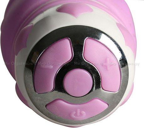 �������� ��� ����� G Purple Porpoise 21 ��, ���� 3