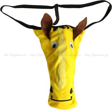 Трусы Лошадь