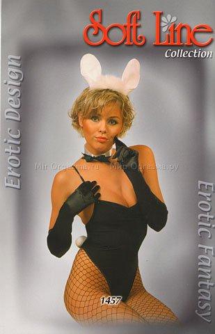 ���� Rabbit